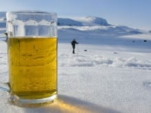 stag_beer_snow